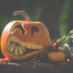 halloween, pumpkin, autumn